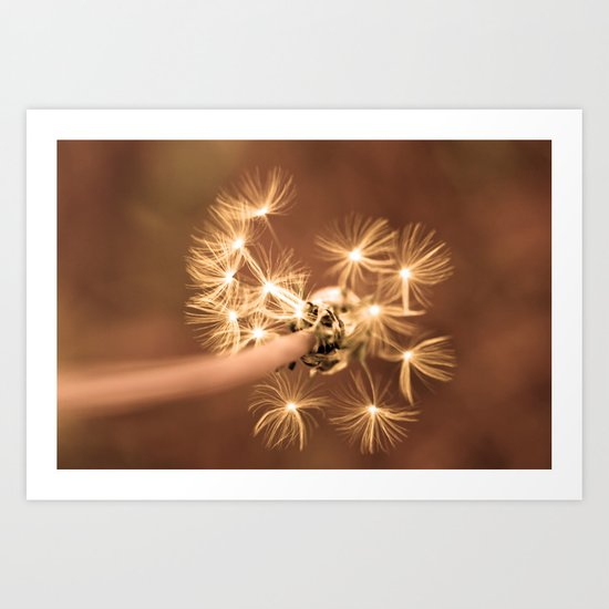 Dandelion  - JUSTART © Art Print