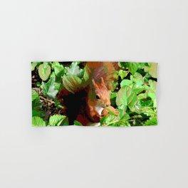Squirrel Hand & Bath Towel