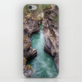 Nature's veins iPhone Skin
