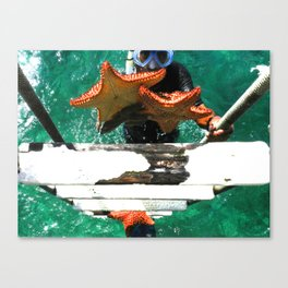 Sea Stars Rise Canvas Print
