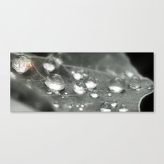 What I love about rain Canvas Print