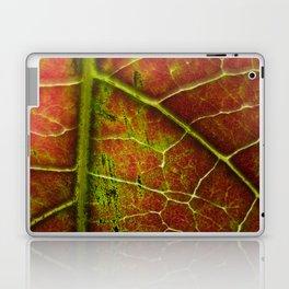 Autumn texture Laptop & iPad Skin
