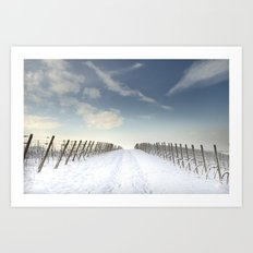 Vineyards in the snow Art Print