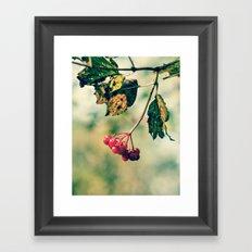 Berry Berry Me  Framed Art Print