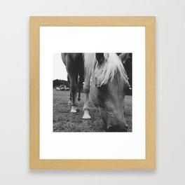 New Friend Framed Art Print