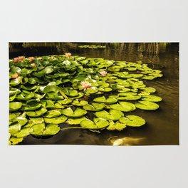 Water Lily Pond at Huntington Gardens No. 2 Rug