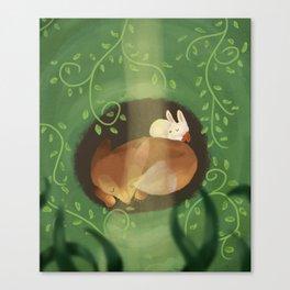 Sleep Time Canvas Print