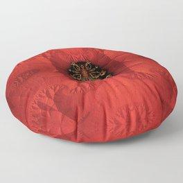Beetle Brooch Vermilion Floor Pillow
