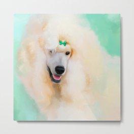 White Standard Poodle Metal Print
