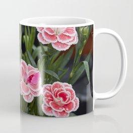 pink carnation in bloom in spring Coffee Mug