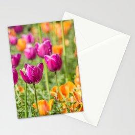 Tulip Medley Stationery Cards