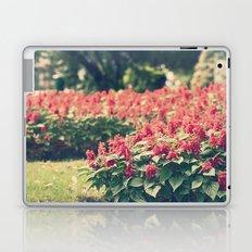 In red Laptop & iPad Skin