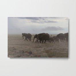 Elephant Stampede Metal Print