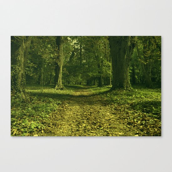 Magic woods Canvas Print
