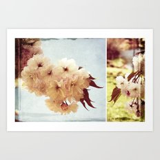 Cherry Blossom Dreaming Art Print