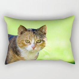 Beautiful mottled cat in garden. Rectangular Pillow