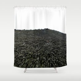 Thatched Roof of German Viking Home Shower Curtain