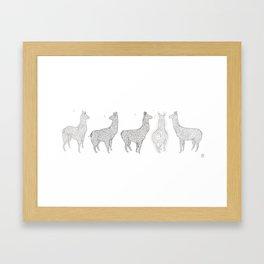 Lamarama Framed Art Print