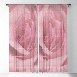 Texas John Rose Sheer Curtain