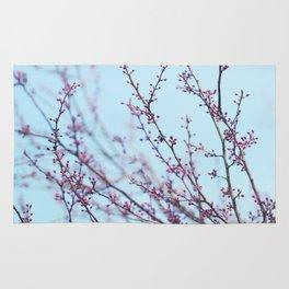 Spring Air Rug