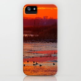 Duck Hole 2 iPhone Case