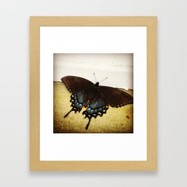 Nature's Art Framed Art Print
