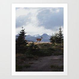 Surprise Encounter Art Print