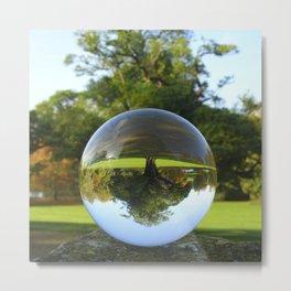 Old Park Tree, crystal ball / Glass Ball Photography Metal Print