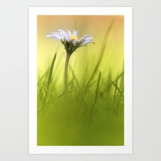 Thinking of summer... Art Print