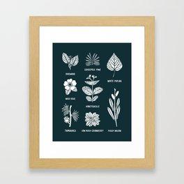 Shrubs & Trees // Navy & White Framed Art Print