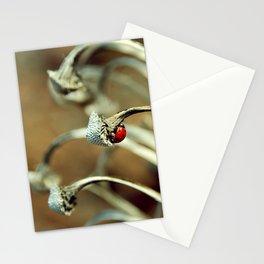 Ladybug Stationery Cards