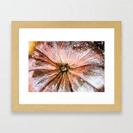 Abstract PumpKin1 Framed Art Print