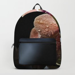 a noble specimen Backpack