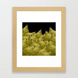 Etrogs Framed Art Print