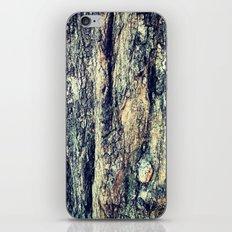 Old Tree Chapel Hill iPhone Skin