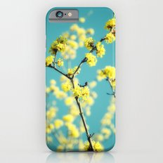 Yellow Spring blossoms iPhone 6s Slim Case