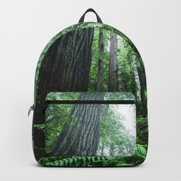 Redwood National Park- Pacific Northwest Nature Photography Backpack
