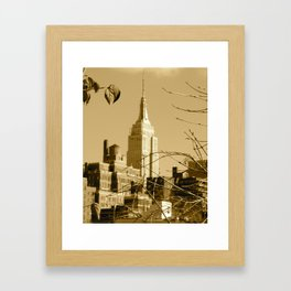 View From a Roof Top Framed Art Print