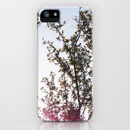 West Texas iPhone Case