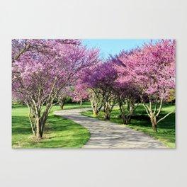 drive-way Canvas Print