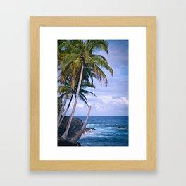 Hawaiian Palm Trees Framed Art Print