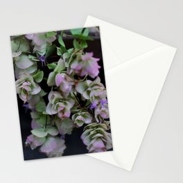 Hanging Flora Stationery Cards