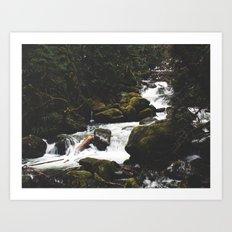 Oregon Spring Art Print