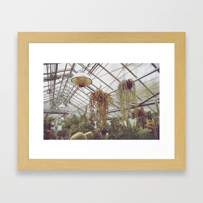 Allan Gardens Conservatory I Framed Art Print