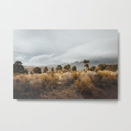 Great Sand Dunes National Park Metal Print