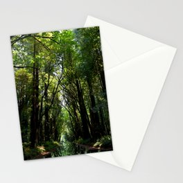 Redwood Reflection Stationery Cards