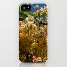 Wilhelmina Tenney Rainbow Shower Tree iPhone Case