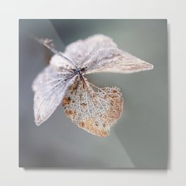 Sparkling Frost Metal Print