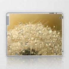 Sun Sparkled Dandy Laptop & iPad Skin