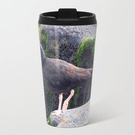 Black Oystercatcher Travel Mug